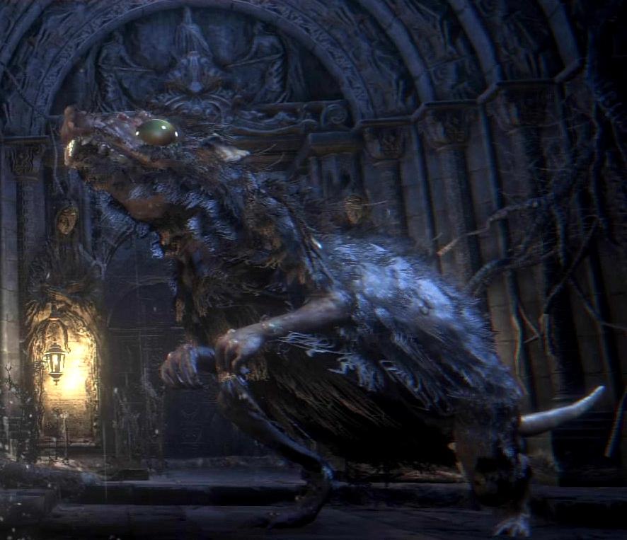Labyrinth Rat Bloodborne Wiki Fandom Powered By Wikia