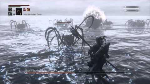 Bloodborne Boss Rom - Spider glitch?