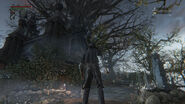 Image-bloodborne-screen-36db