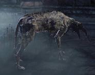 Rabid Dog G №1