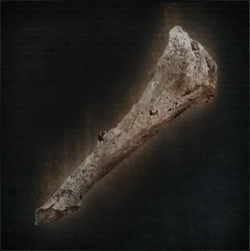 Old Hunter Bone