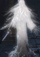 Злой дух лабиринта