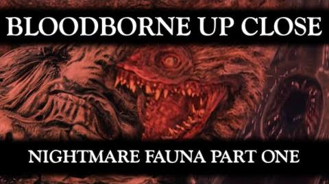 Bloodborne Up Close 01 Nightmare Fauna Part 1