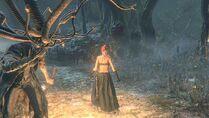 Bloodborne™ 20150522072255 - 1