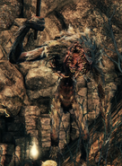 Bloodborne™ 20150511200447