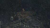 Forbidden Woods 3