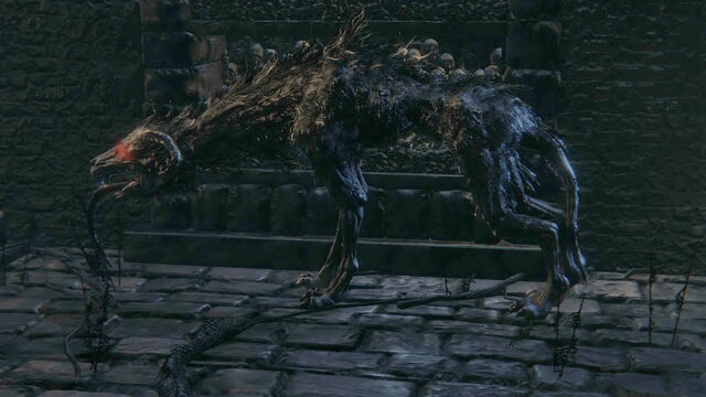 File:Bloodborne™ 20150524091403.jpg