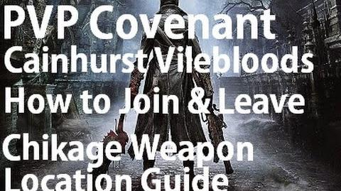 Bloodborne - How To Join PVP Covenant Cainhurst Vilebloods Armor & Chikage Location