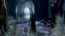 Bloodborne™ 20150626205623 — копия