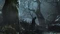 Dark forest 2.jpg