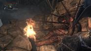 Frenzied death