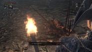 Frenzied death bloodborne