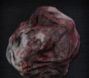 Enlarged Head