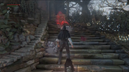 Phantom Bloodborne 111