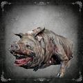 Maneater+Boar-1-