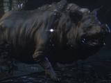 Maneater Boar