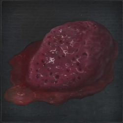 Queenly Blood Bloodborne
