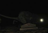 Rat №5