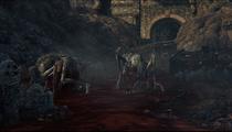 River of Blood Bloodborne