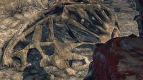 Hunter's Nightmare Amygdala Header