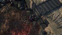Image bloodborne-58r