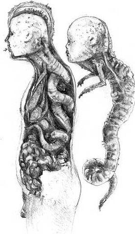 File:Parasitic Daemite concept art.jpg