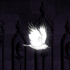 Raven form ingame