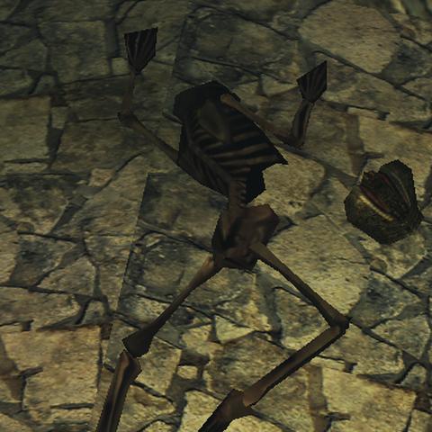 Voicu's Skeleton