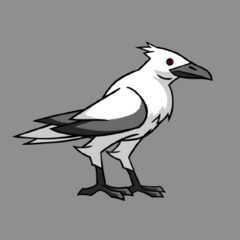 Raven artwork