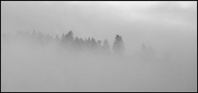 File:Valbrume.jpg