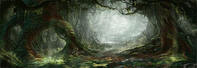 File:Gaste Forêt.jpg