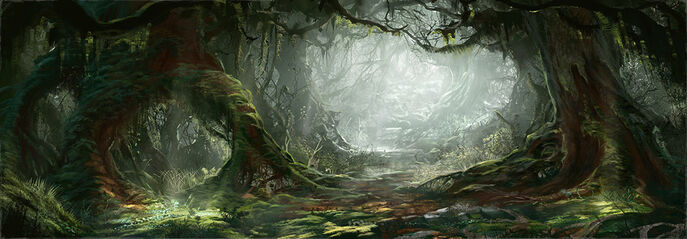 Gaste Forêt