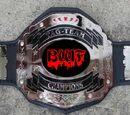 BWF World Tag Team Championship