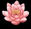 Flowerpink9