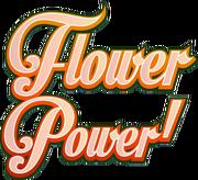 Flower Power popup