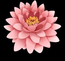 Flowerpinkbloom