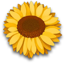 Floweryellowbloom
