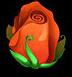 Flowerred6