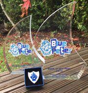 Blue Peter Award