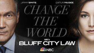 Bluff City Law Cover