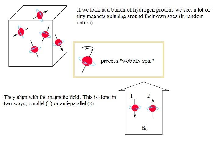 Category:Physics | BMET Wiki | FANDOM powered by Wikia