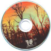 Bmsr ppf cwg disc