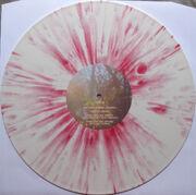 Bmsr dg vinyl 2