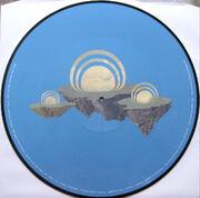 Bmsr cult vinyl back