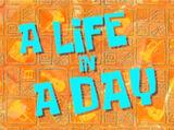 Una Vida en un Día