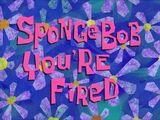 Bob, estás despedido!