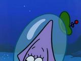 Calamarina
