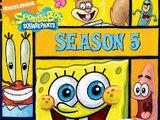 Quinta Temporada