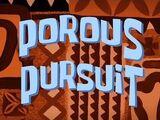 Porous Pursuit