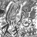 Fist of Shachihoko